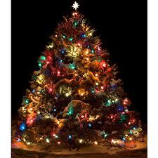 colored tree lights happy holidays