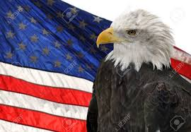Bald Eagle And American Flag American Flag And Bald Eagle Symbols Of Freedom And Democracy