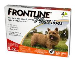 frontline plus for dogs orange for dogs 5 to 22 lbs petco