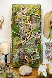 25 best moss for century 25 flowers that awesome hanging baskets moss wall fisher
