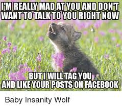 Mad Wolf Meme - 25 best memes about baby insanity wolf baby insanity wolf memes