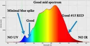 harmful effects of led lights is indirect led light harmful to the eyes quora