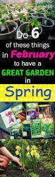 best vegetable garden layout best 25 allotment planner ideas on pinterest garden layout