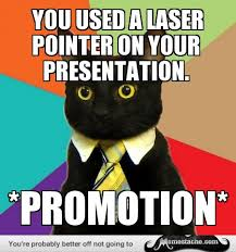 Business Cat Memes - business cat you used a laser pointer on your presentation