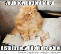 Reading Meme - of reading simbly bored