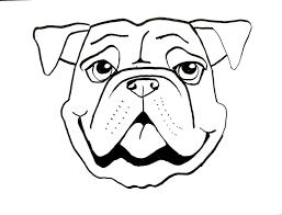 smart class bull dog draw long