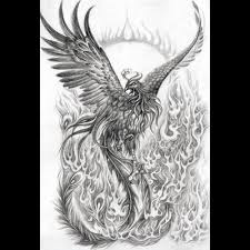 9 best phoenix tattoo drawings for women images on pinterest
