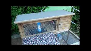 Rabbit Hutches And Runs How I Clean Out My Rabbits U0027 Hutch And Run Cage Youtube