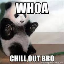 Chill Out Bro Meme - md panda chillout bro 30 minute downtempo mix by md panda