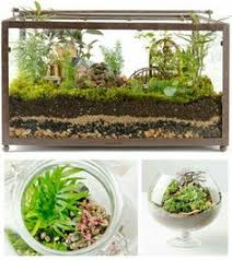 create a hip looking terrarium from an old fish tank grab some