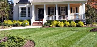 stunning simple front landscaping ideas simple garden ideas for