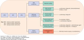 benign prostatic hyperplasia pharmacotherapy a pathophysiologic