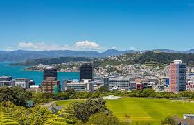new zealand job interview tech candidates to fly to new zealand for paid for job interview trip