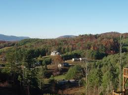 surrounded by christmas tree farms boone nc pinterest