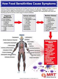 mrt u0026 leap therapy clem u0026 thyme nutrition