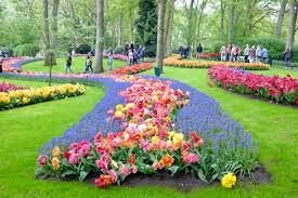 flower garden in amsterdam review of keukenhof gardens outside amsterdam