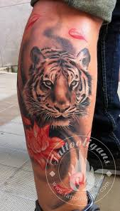 tiger by artist yiannis agios ideas