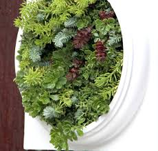 wall ideas succulent living wall instructions how to make a