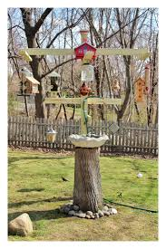 backyard bird feeding station birds pinterest backyard bird