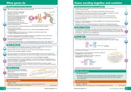 100 ocr gateway cgp physics revision guide flick through