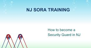 nj sora class nj sora power point slides