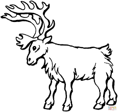 deer 5 coloring page free printable coloring pages