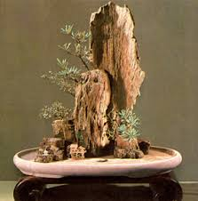 chinese rock gardens decorating clear