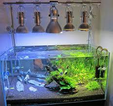10 gallon planted tank led lighting 12 best planted tank light images on pinterest fish aquariums
