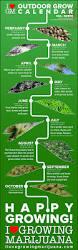 Vegetable Garden Planting Calendar by Outdoor Grow Calendar For Marijuana Plants