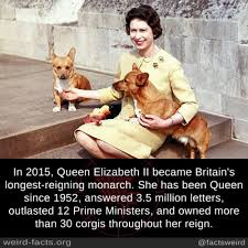 the queen u0027s corgis