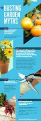 69 best garden images on pinterest gardening plants and garden