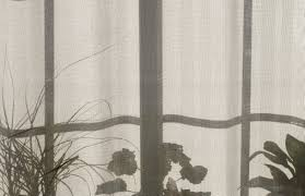 free images silhouette plant pattern line shadow curtain