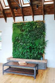 Indoor Wall Planters by Living Room Lush Tropical Indoor 2017 Living Wall 2017 Living