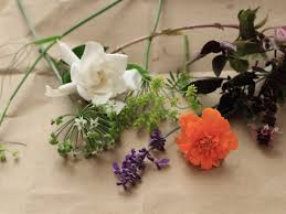 Where To Buy Edible Flowers - edible flowers crystallized gardenia petals cooking light