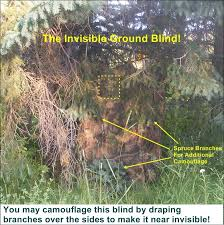 Building A Box Blind Free Deer Hunting Ground Blind Plans