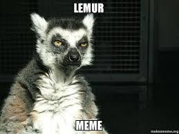 Lemur Meme - lemur meme lanslo make a meme