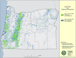 oregon department of forestry maps oregon map