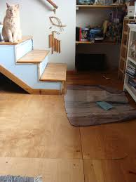 Paint For Laminate Flooring Painting Sealing Indoor Plywood Floor Finishes Forum At Permies