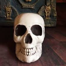 skull decor plastic skeleton decor prop human skull decoration