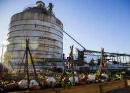 magnolia farms waco tx 13 best magnolia market at the silos images on pinterest