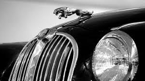lexus of omaha careers jaguar u2022 procare collision center