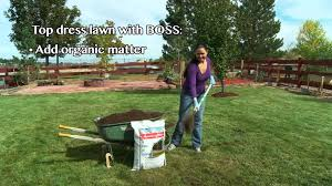fall tips fall lawn care youtube fall tips fall lawn care