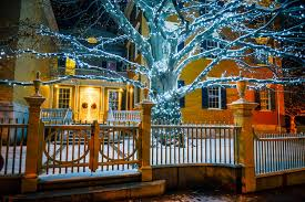 lighting stores portland maine 2017 copper beech tree lighting portland downtown