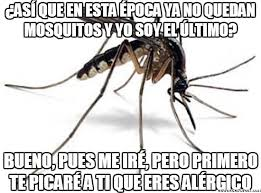 Mosquito Meme - el último mosquito