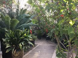 Ucr Botanical Gardens Img 0004 Bagsc News
