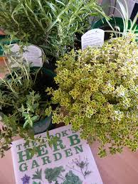 top ten herb garden benefits