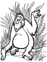 coloring pages jungle coloring jungle animals coloring