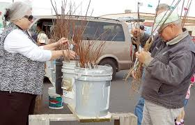 ace hardware annual report ace hardware hosts annual tree giveaway community news east