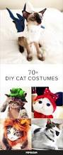 cat costume for halloween best 25 halloween costumes for cats ideas only on pinterest cat