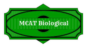 best mcat biology study guide youtube